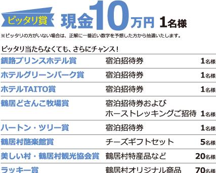 ピッタリ賞現金10万円1名様